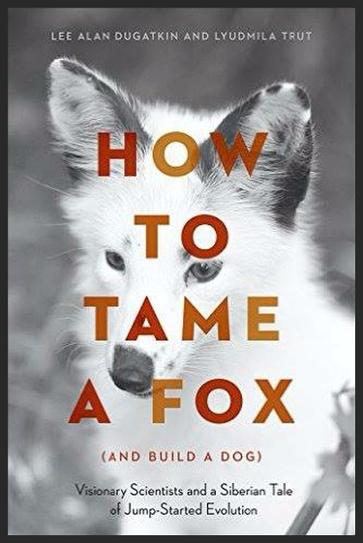 How to Tame a Fox (And Build a Dog)
