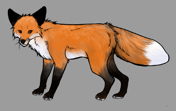 Red Fox Colour Mutations