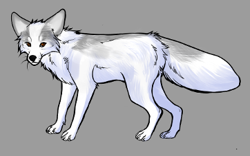 Red Fox Colour Mutations -Silver Marble Platinum