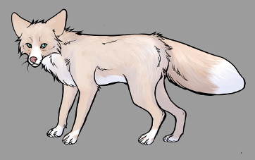 Red Fox Colour Mutations - Pink Whitemark