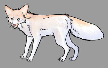 Red Fox Colour Mutations - Pink Marble