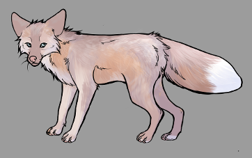 Red Fox Colour Mutations - Pink Cross