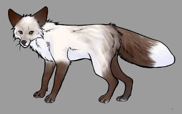 Red Fox Colour Mutations - Snow Glow